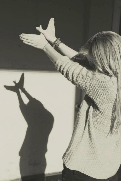 sombra-manos-pajaro